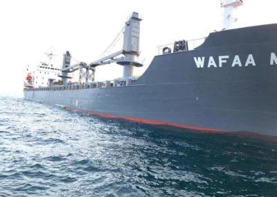 Wafaa M2